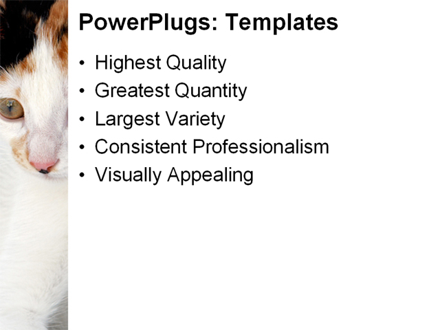 Powerpoint Background Cats Powerpoint Template Cats
